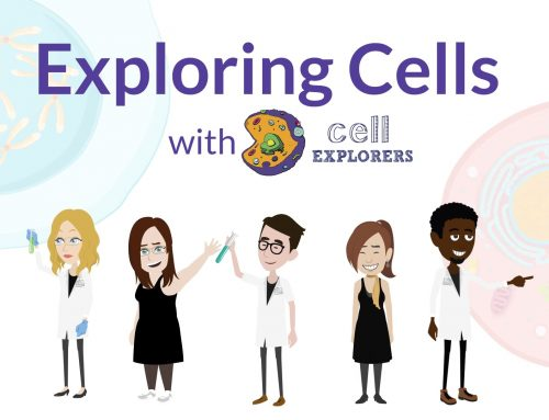 Cell Explorers